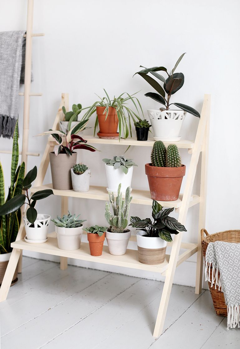 DIY Ladder Plant Stand Diy plant stand, Plant shelves
