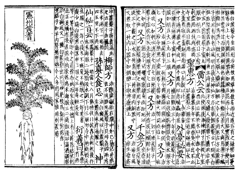 The Complete Book of Chinese Health amp Healing Guarding the Three Treasures