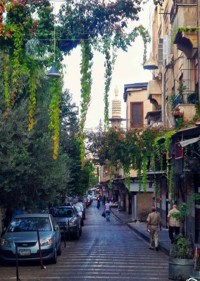 Pin By رونزا On Syria Syria Pictures Travel Aesthetic Aleppo Syria