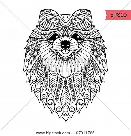 Pomeranian Coloring Pages For Adults Zentangle Images Stock