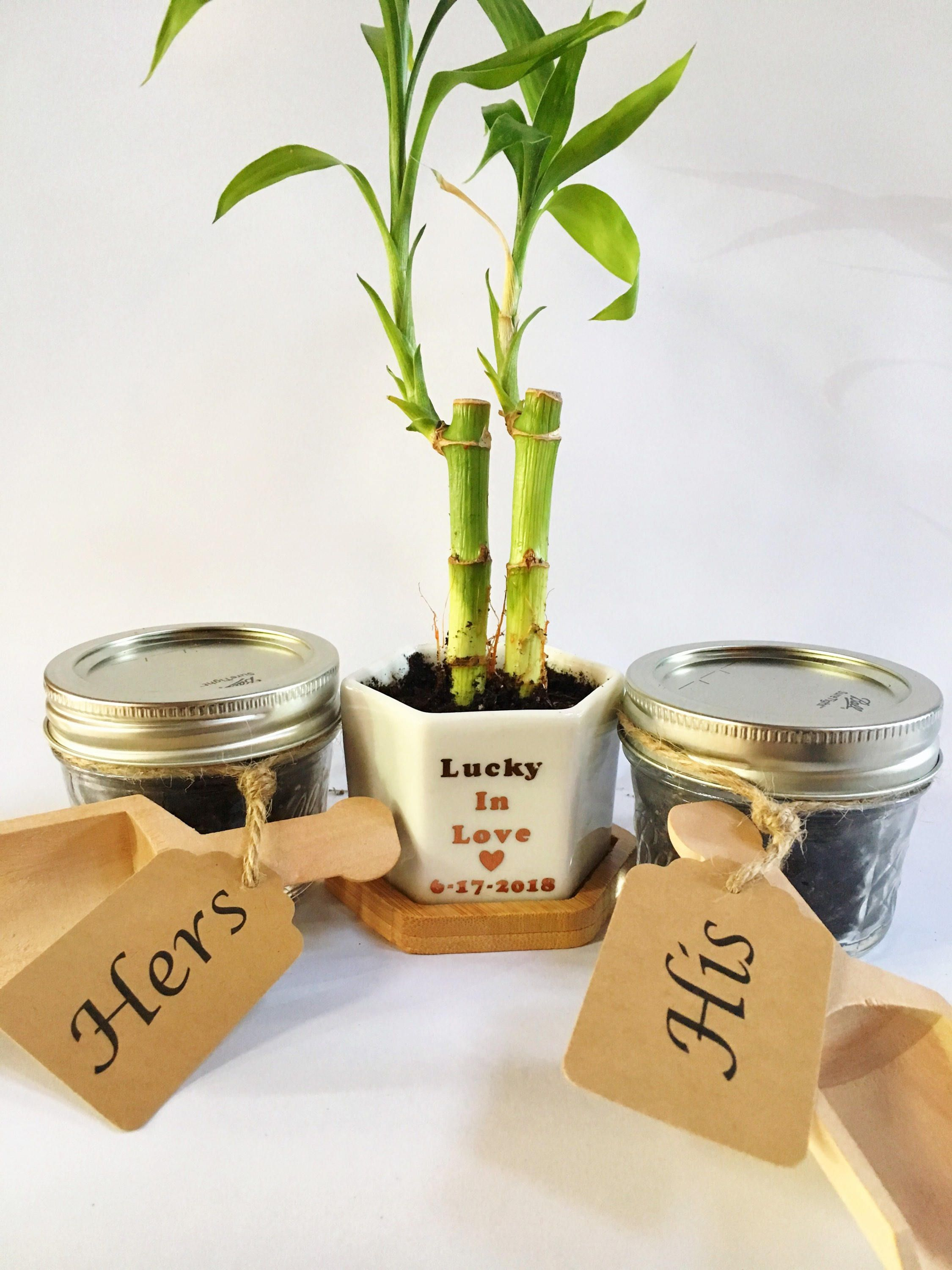For a unique spin on a unity ceremony, plant a bamboo plant or a ...