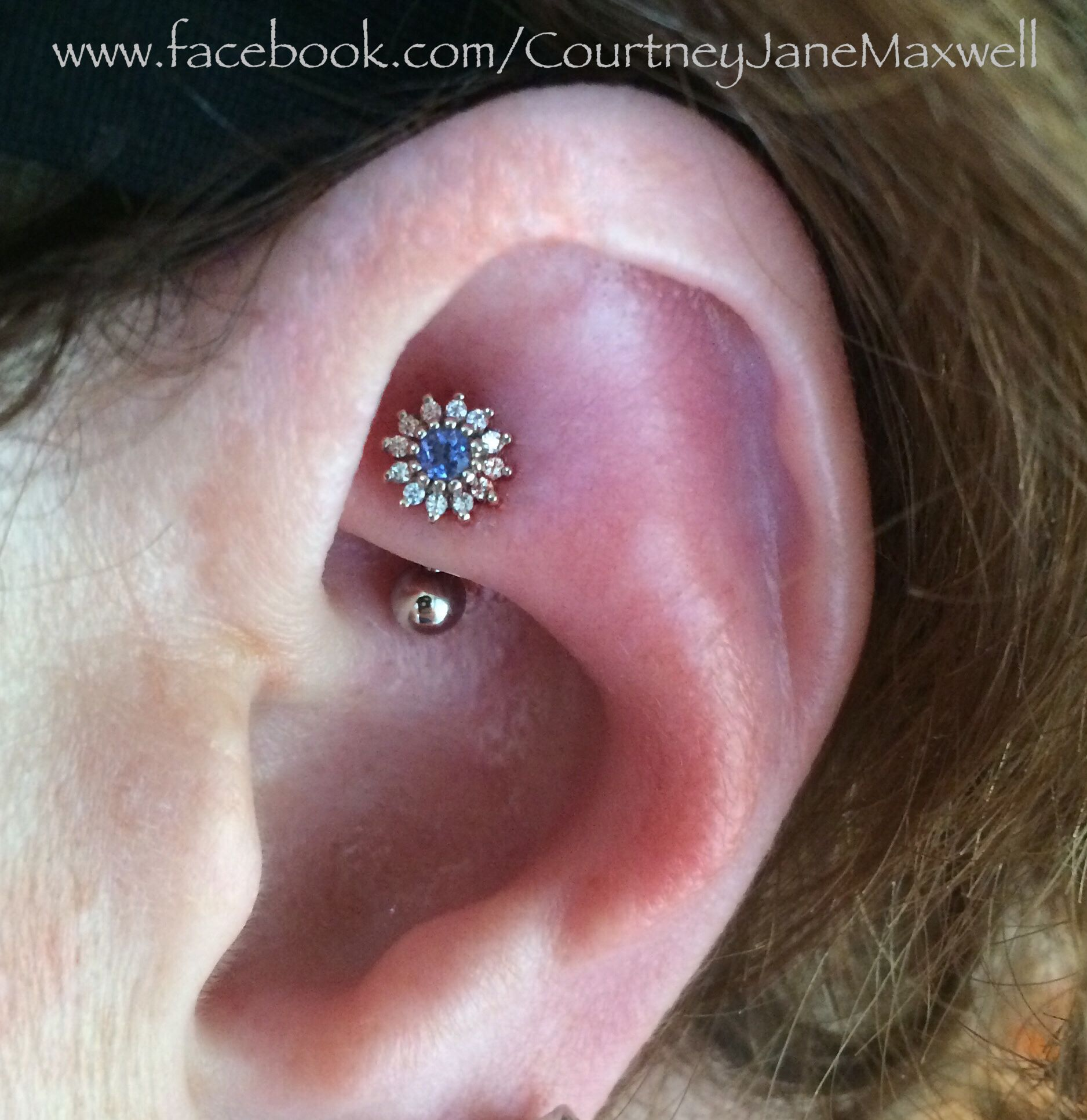 Rook piercing with insanely gorgeous Rose setting in 14k white