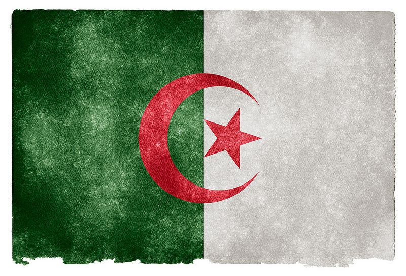 Algeria Grunge Flag Algeria Flag Flags Of The World Flag