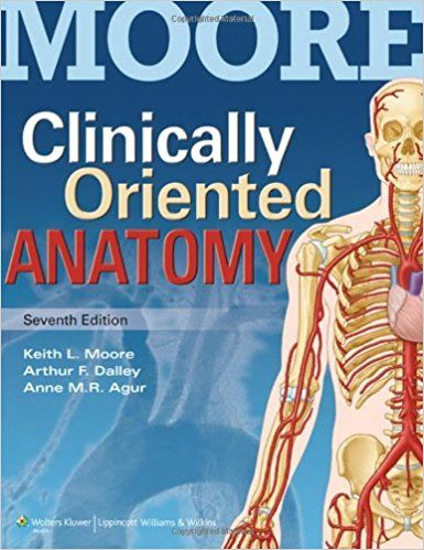 Test Bank For Clinically Oriented Anatomy- 6th Edition- Moore - Agur ...