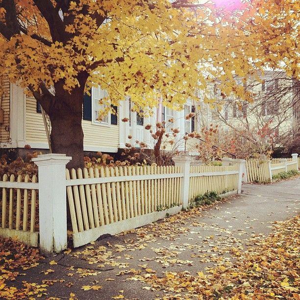 Autumn In Exeter Nh Instagram Photo Instagram Photo