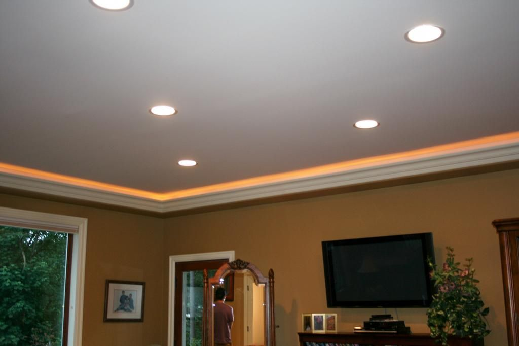Crown moulding wrope lighting above would look awesome in the crown moulding wrope lighting above would look awesome in the dining room aloadofball Choice Image