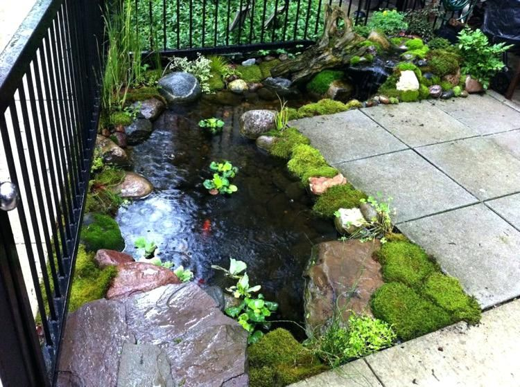 Backyard Ponds Be Equipped Small Koi Pond Be Equipped Building A