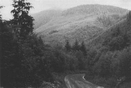 Managing Multiple Uses on National Forests, 1905-1995: A 90-year ...
