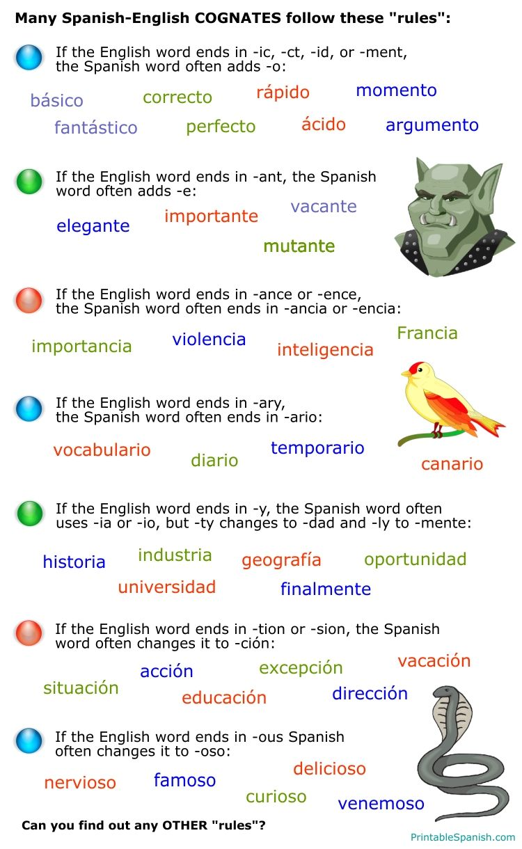 Spanish To English Cognates Rules Printable Lesson Free Cognates