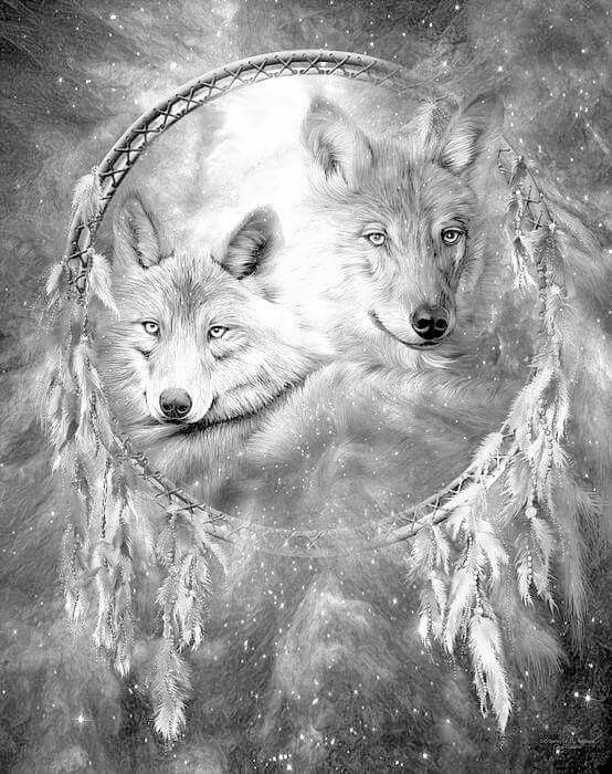 Kleurplaten Wolf.Pin By Petra Pastoor On Kleurplaten Wolf Dreamcatcher Art Wolf