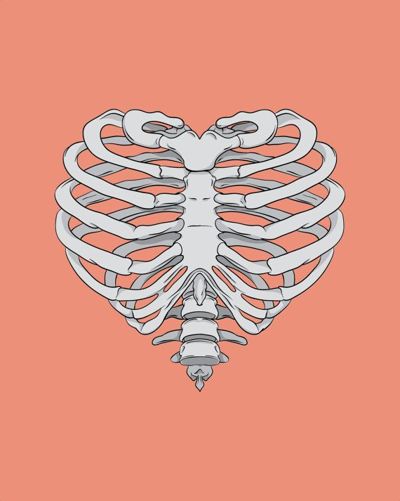 Heart Ribcage By Appendageaccessories On Etsy 10 00 Bone Drawing Heart Drawing Rib Cage