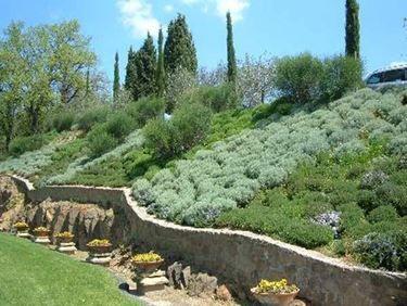 Immagine di for Mobili giardinaggio