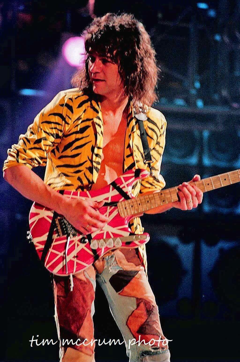 Eddie 1984 Eddie Van Halen Van Halen Van Halen 5150