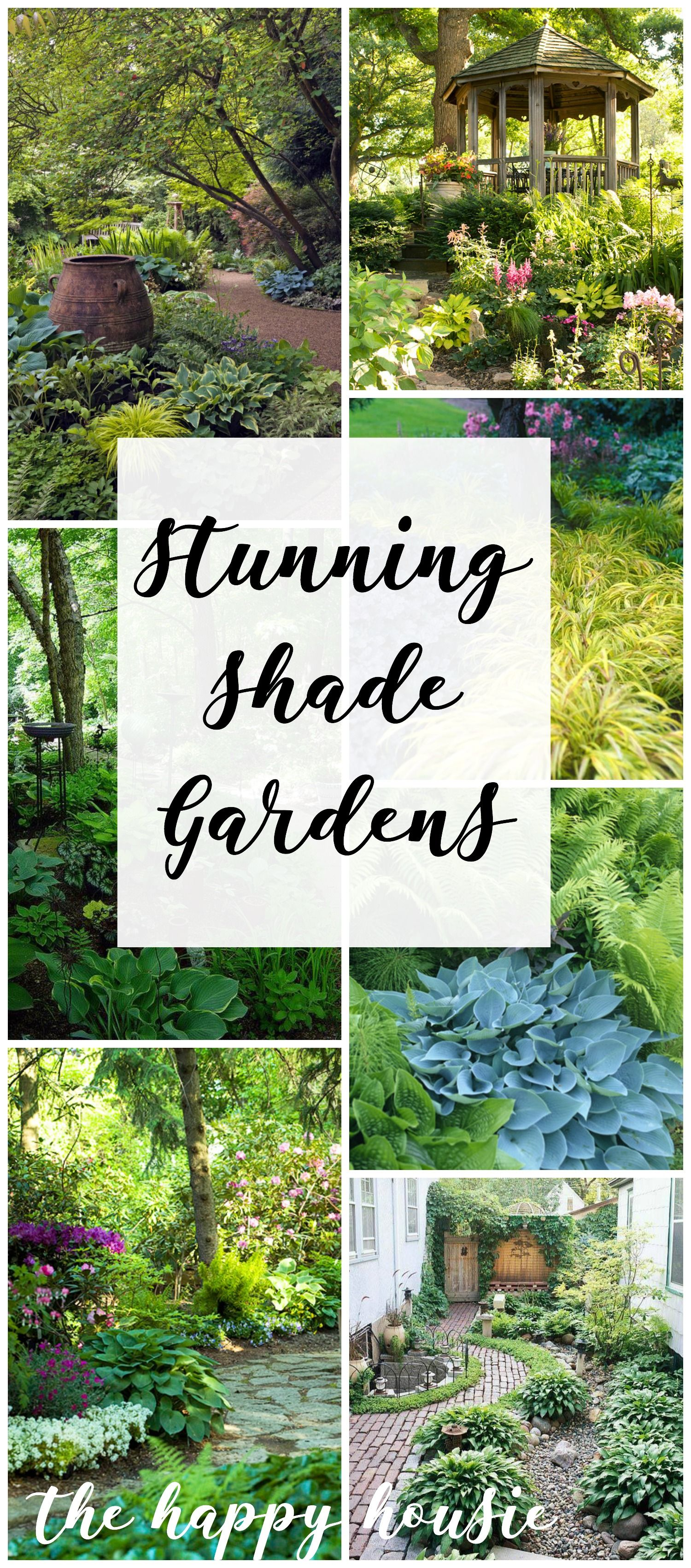 Shady Plants and Gardens - House Plans and More |Shady Yard Landscaping