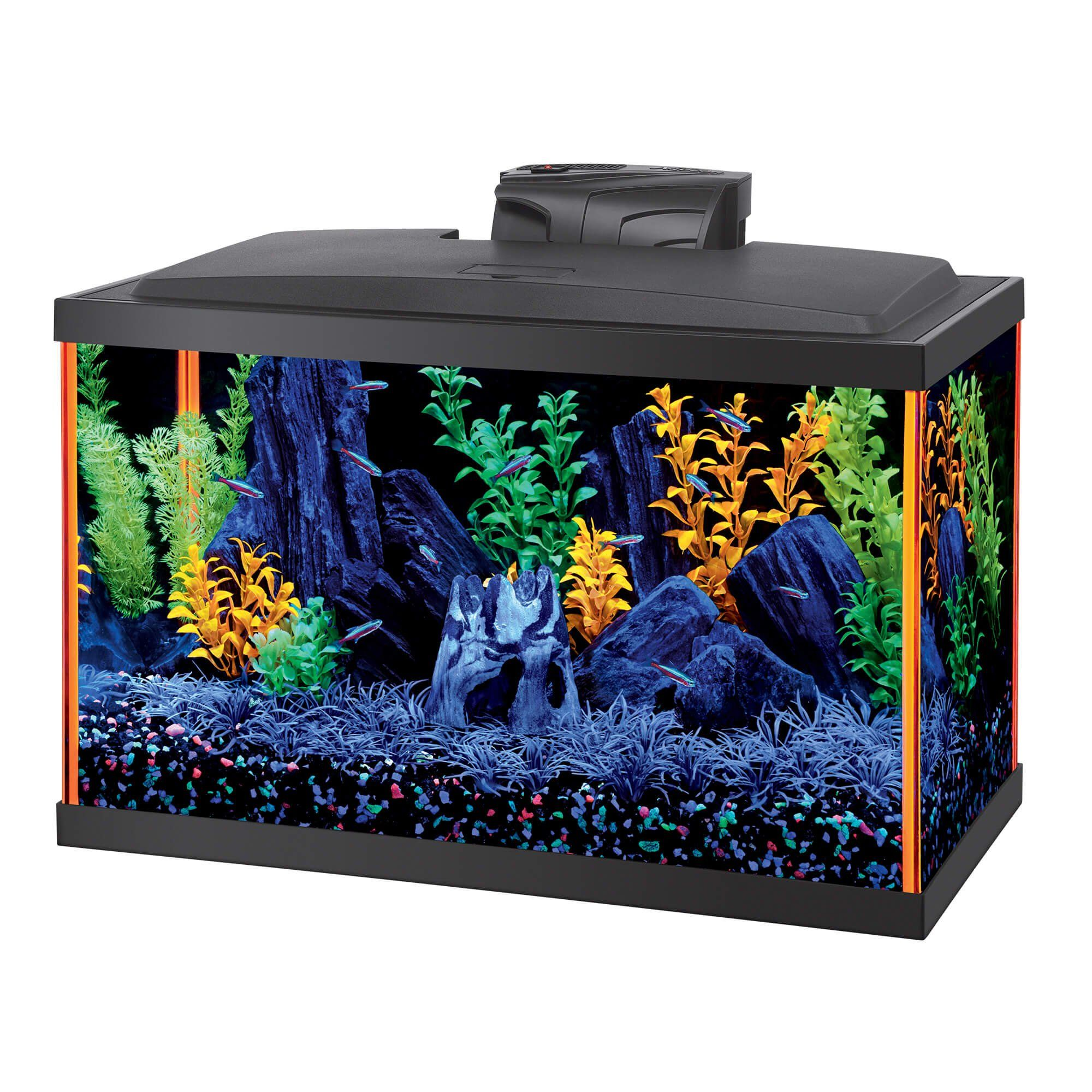 Aqueon NeoGlow 10 Gallon Orange LED Kit in 2019 Aquarium