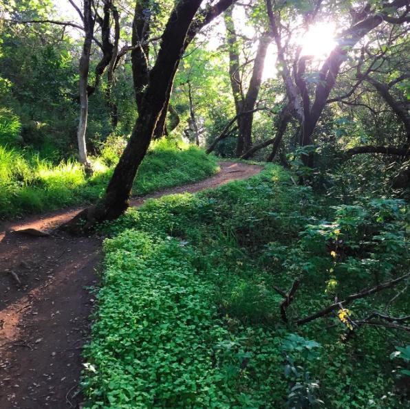 Tackling the Trail