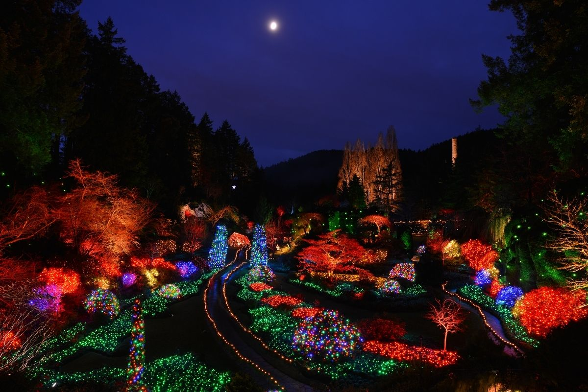 21766504f8102d9ef9c8d18c55b28536 - The Butchart Gardens Christmas Lights Tour