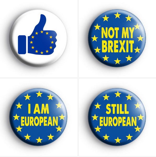 In Out Europe Referendum 25mm Button Badge Better Off Out EU European Union