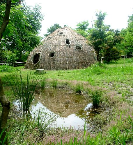 Beautiful hut by a marsh. Made from Rattan, Bamboo, and dried leaves.