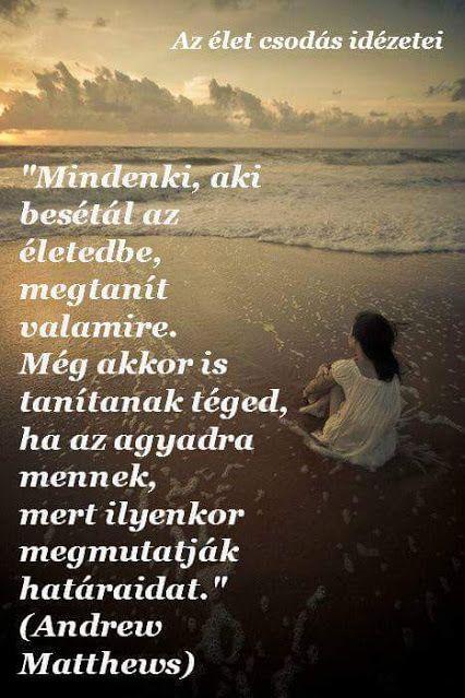 a szív idézetek Csodás idézetek,esély..,..építs várat,.a szív és az