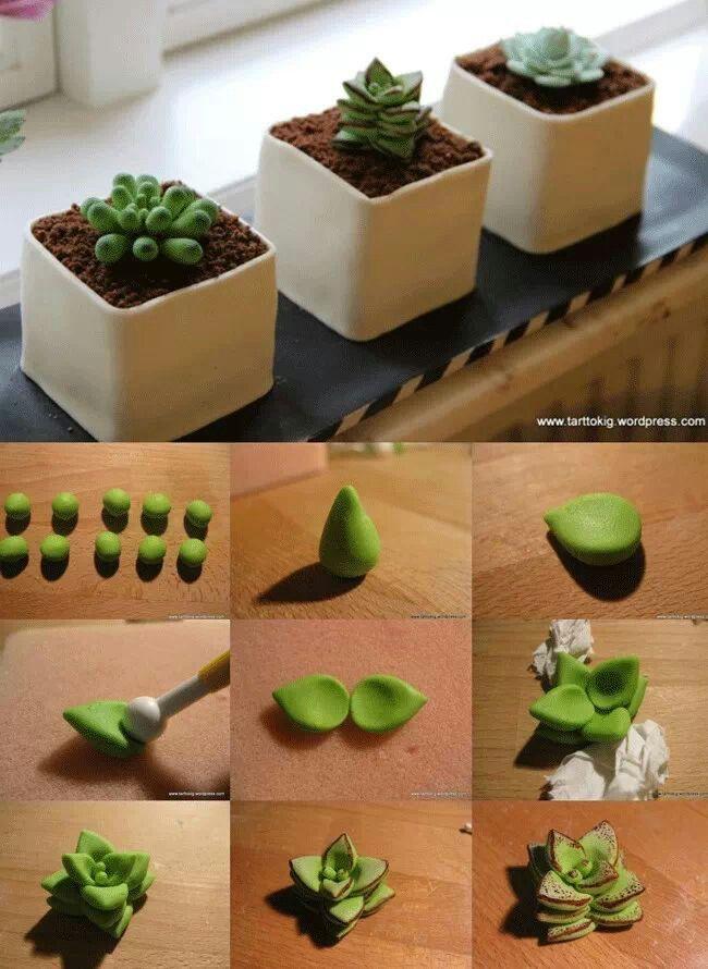 tutorial de cactáceas o suculentas craftcompany.co.uk | modelado ...
