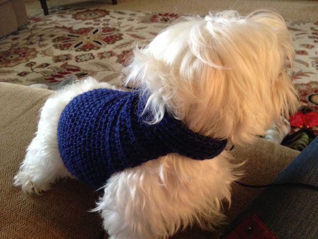 Free Crochet Dog Sweater Pattern | Crochet | Pinterest | Suéteres y ...