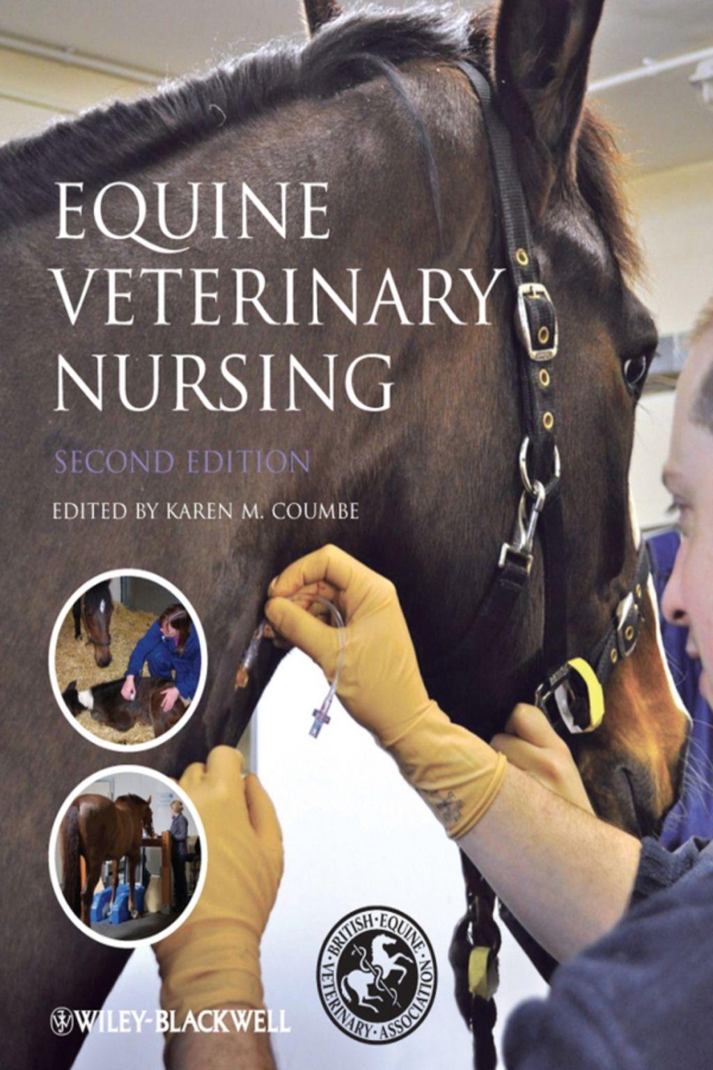 Equine Veterinary Nursing Ebook Equine Veterinary Veterinary Equine Veterinarian