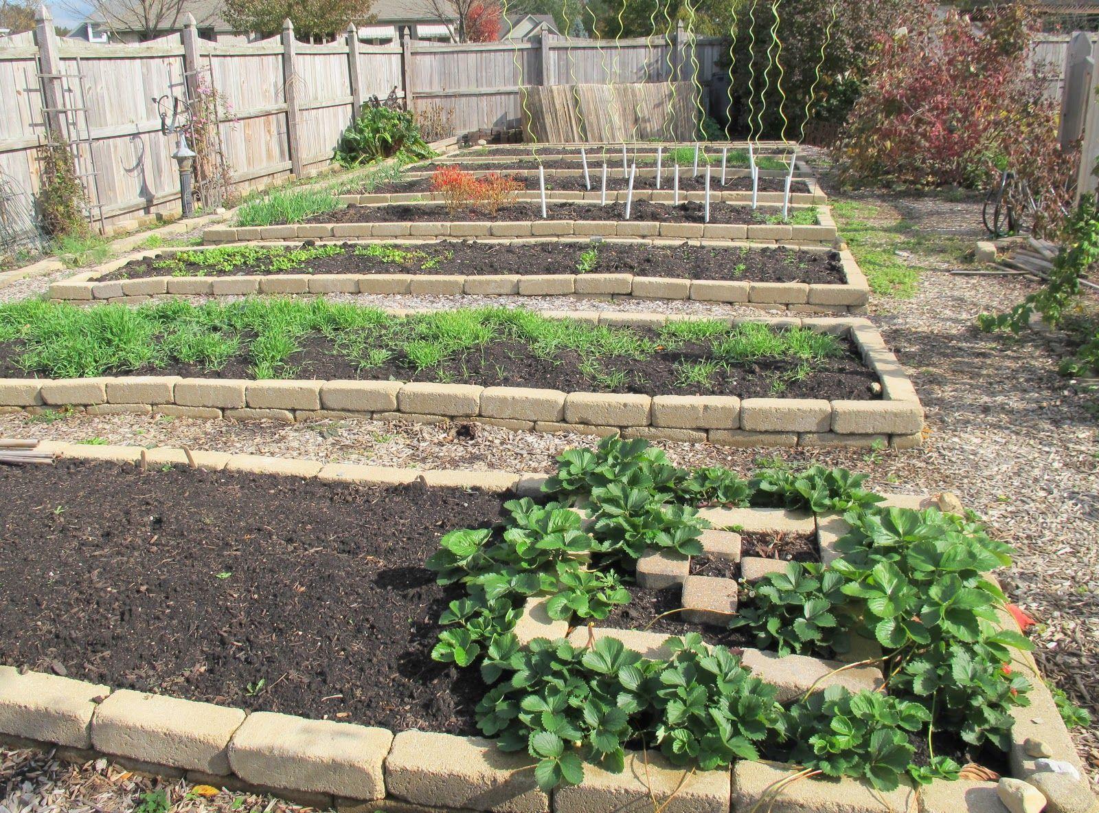 Vegetable garden layout | Home vegetable garden design ...