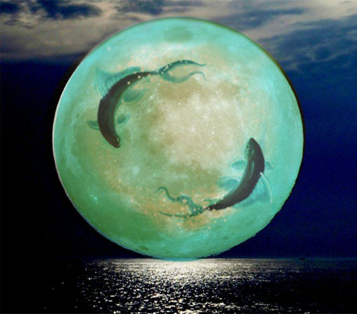 Pisces Full Moon Watercolor Art & Collectibles kientructhanhdat.com