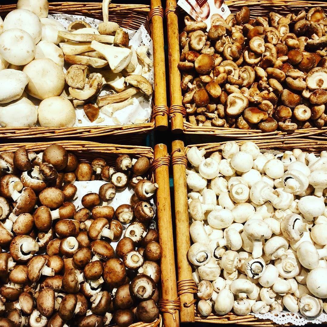 Pilze  #vegan #plantbased #gesund #healthy #cleaneating #eatclean #eattherainbow #lowcarb #celebratehealthier #heuteaufmeinemteller #foodblogger #gemüse #veggies #vegetarisch #vegetarian #pilze #mushrooms #braun #weiß #champignons #kadewe #sonntag #sunday #foodmood #whatveganseat #vegansofig #vegandiet by diyquickhappyfood