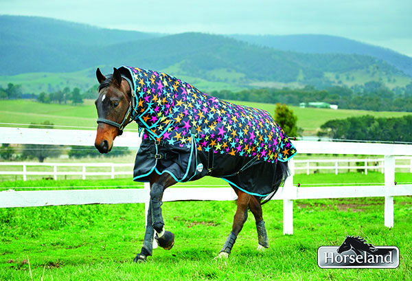 WeatherBeeta's exclusive to Horseland Star Bright's will