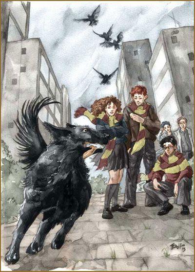 Unbenannte Seite Garri Potter Eda Garri Potter Sirius Blek
