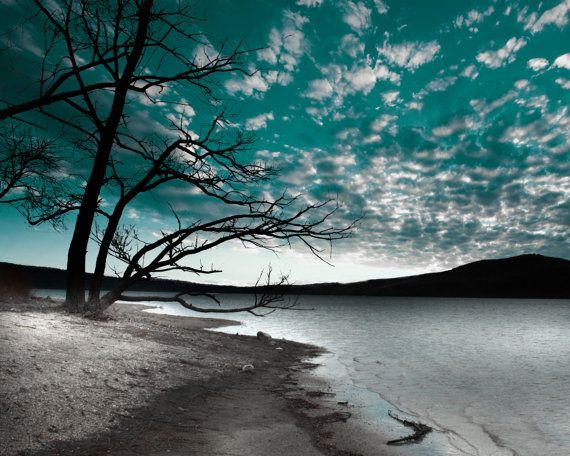 Teal Sky Clouds Tree Lake Wall Art Home Decor Matted Picture On Etsy, $17.99 Part 51