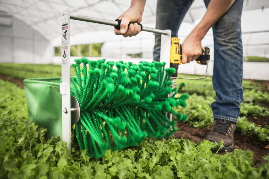 Making baby greens profitable again.... Buy now at