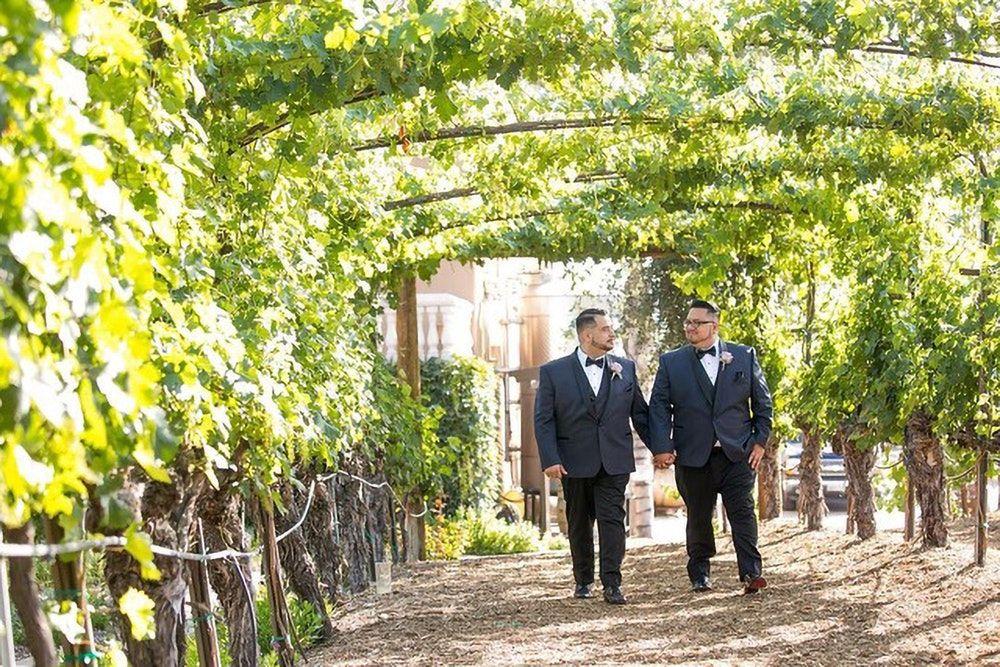 Pin On Lgbtq Weddings