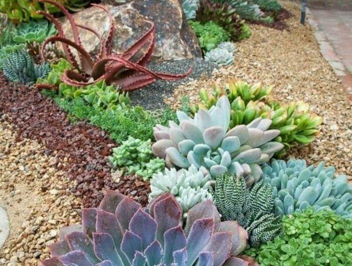 ▷1001+ idées et conseils pour aménager une rocaille fleurie ...