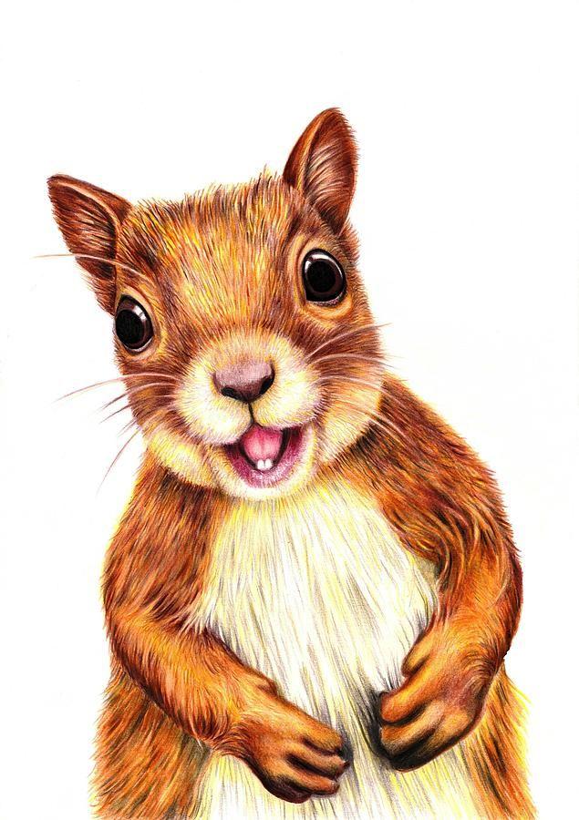 Squirrel ORIGINAL Painting Acrylic Painting cartoon drawing