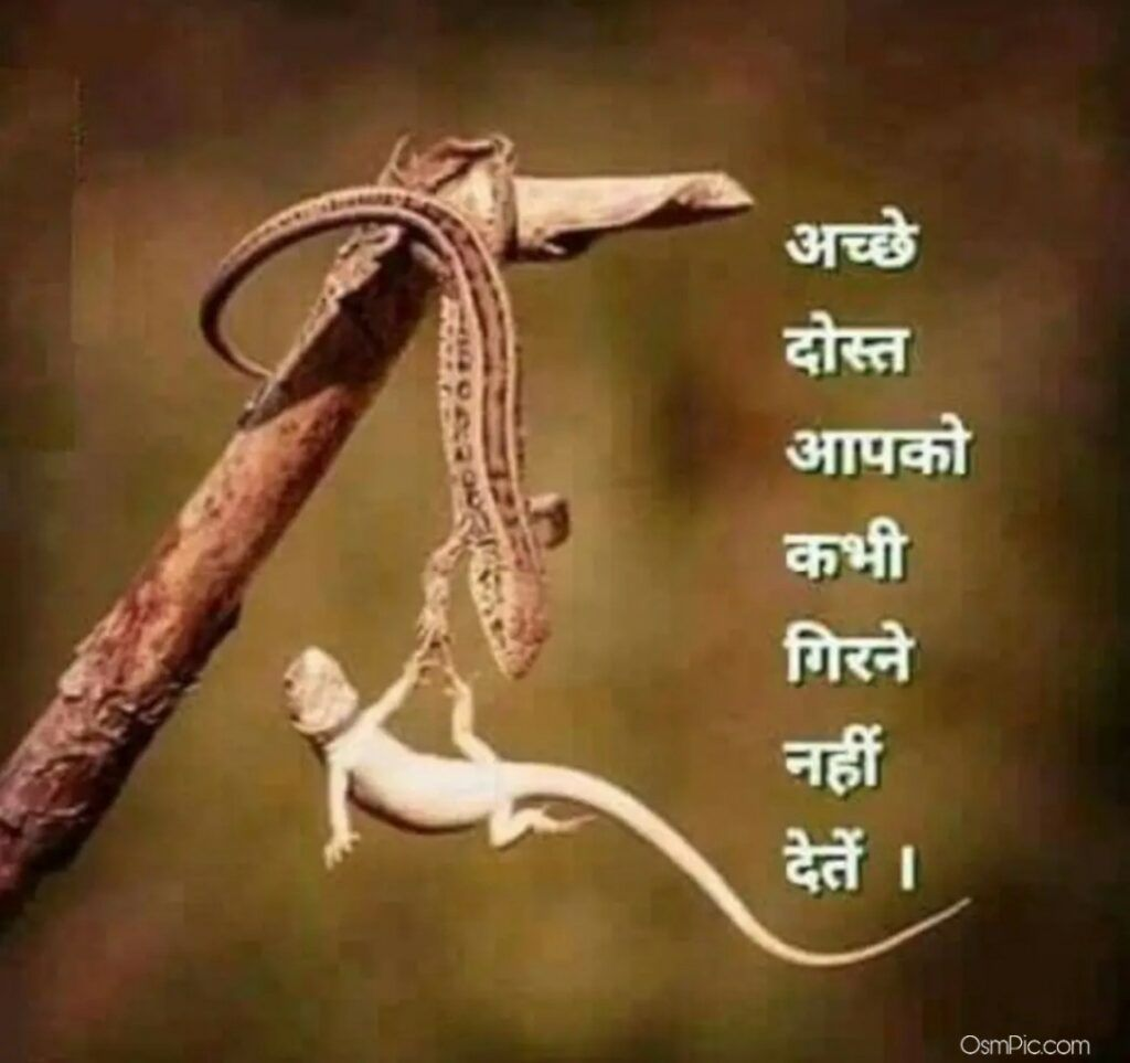 Latest Whatsapp Dp Status Images In Hindi Download Friendship Quotes Funny Motivational Picture Quotes Hindi Quotes Images