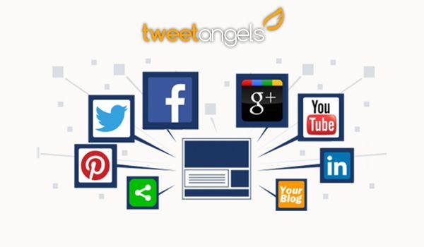 Tweetangels is a social media management company in California that