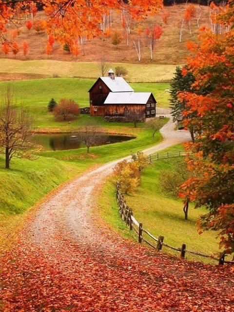 Colors of Autumn, New England.