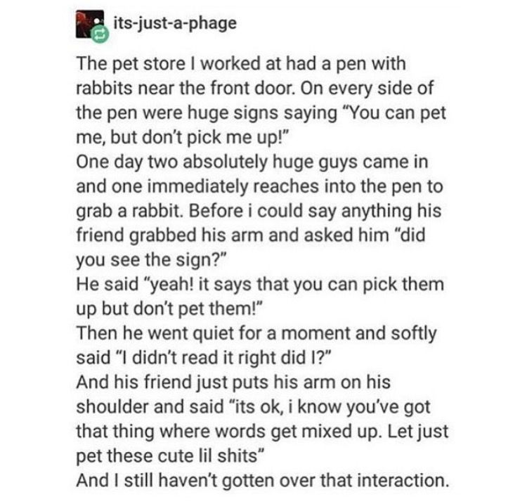 Rabbits Funny Quotes Funny Stories Tumblr Funny