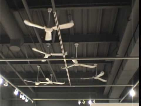 Hum Mounted On Each Ceiling Fan Is