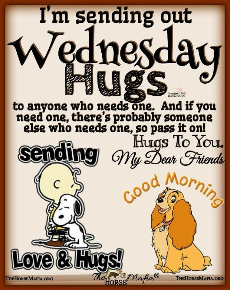 Wednesday Morning Funny : wednesday, morning, funny, Kisses, Happy, Wednesday, Quotes,, Morning