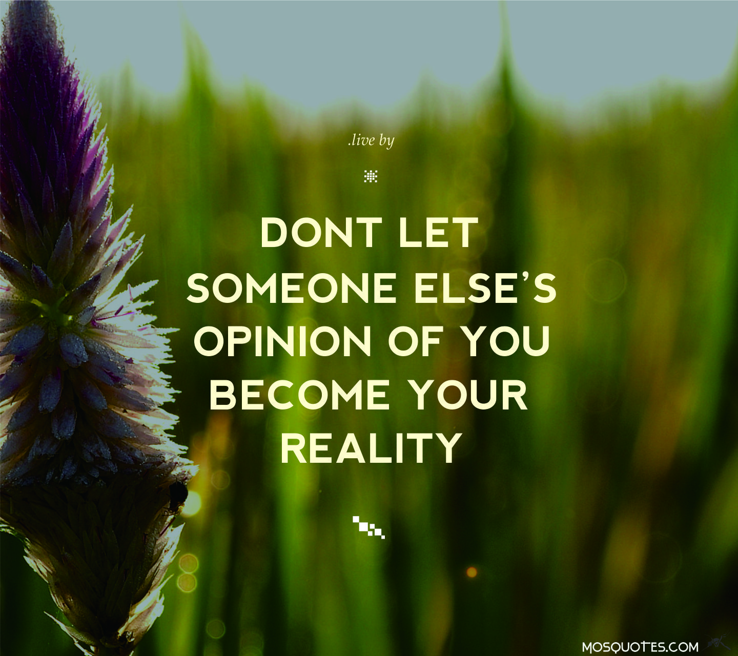 Live Quotes: Quotes To Live By Don't Let Someone Else's Opinion Of You