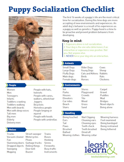 The best selection of dog training books, dog nutrition