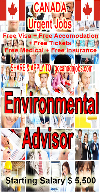 Environmental Advisor Jobs Career Hiring In Canada In 2020 Jobs For Teachers Teacher Assistant Jobs Job Career