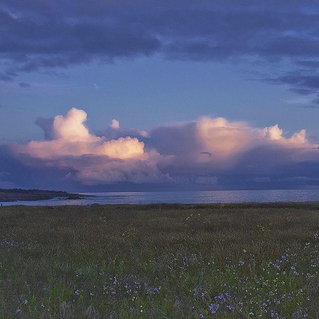 Twilight along the Mendocino Headlands.  Photo by Rita Crane.