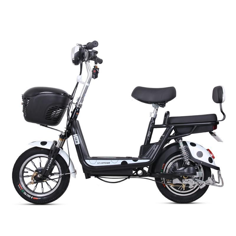 Electric Bicycle 48v12ah Lithium Battery Rang 60km New Ladies