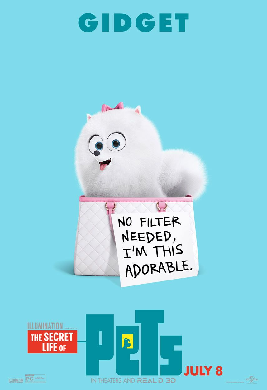 Gidget The Fluffy Pomeranian Is All Natural No Filter Needed The Secret Life Of Pets In Theaters July 8 Secret Life Of Pets Pets Movie Funny Wallpapers