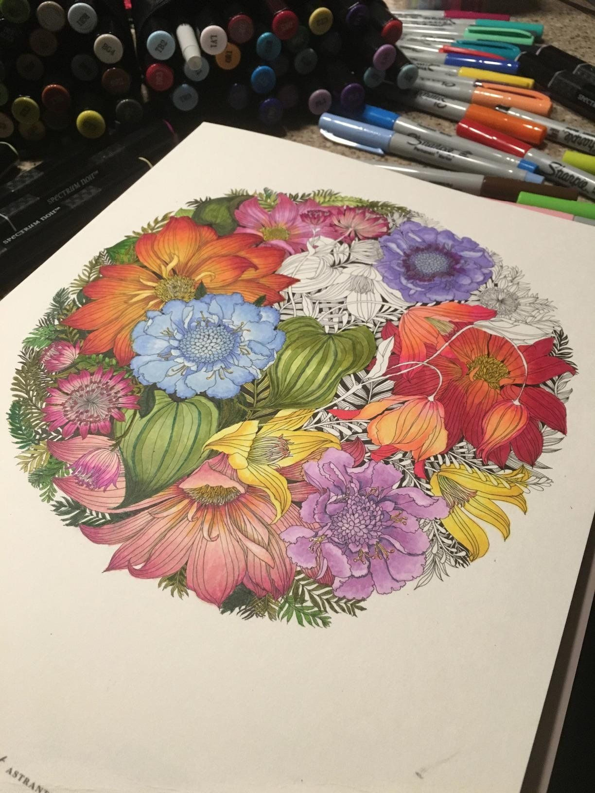 Floribunda: A Flower Coloring Book: Leila Duly ...